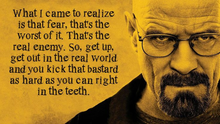 Walter White you bloody fearless genius