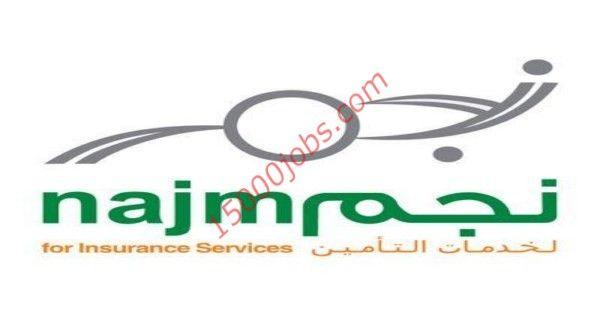 متابعات الوظائف وظائف نسائية فى شركة نجم لخدمات التأمين فى كل المدن وظائف سعوديه شاغره Rectangle Glass