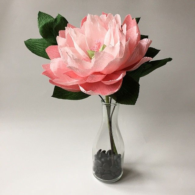 Paper Portrayals - Peony