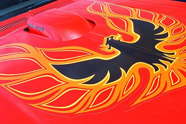 17 Best Images About Firebird Hood Logo On Pinterest