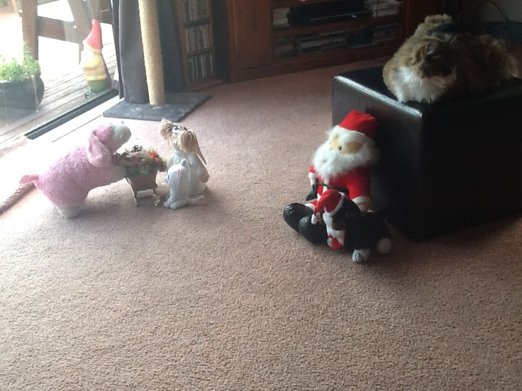 Ho ho ho is the sleigh ready angel   Sure is Santa  No it is not you forgot these two toys