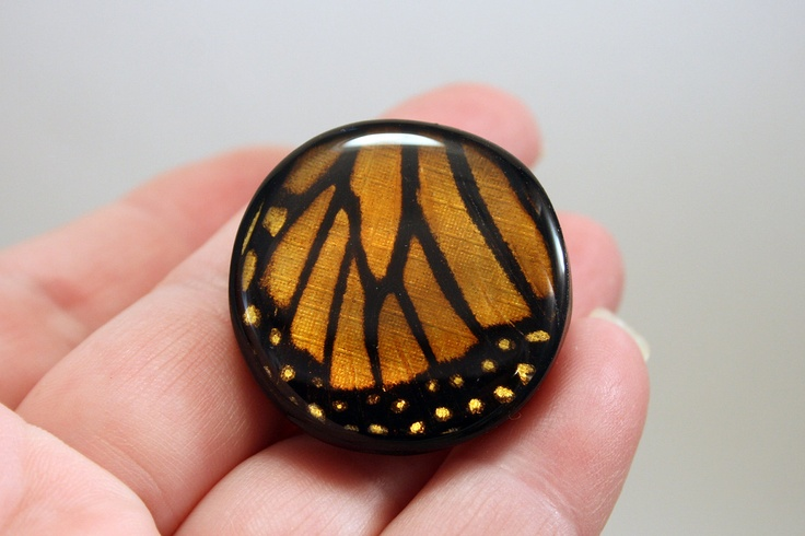 Resin Knob, Butterfly Knob, Door / Draw Knob, Real Butterfly knob, Folk Art - Cabinet door knob / draw pull, OOAK 1 Pair (2 knobs). $45.00, via Etsy.