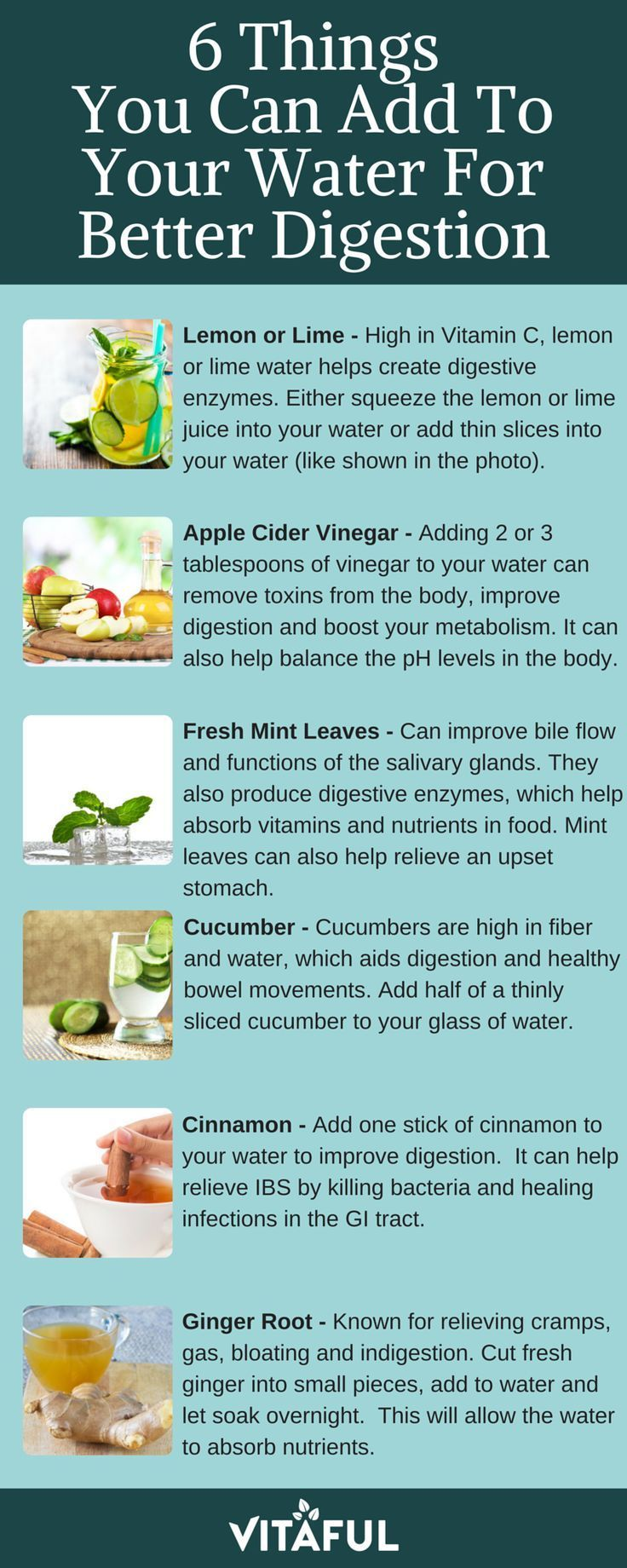 6 Things You Can Add To Your Water For Better Digestion   Detox Water   Gut Health  