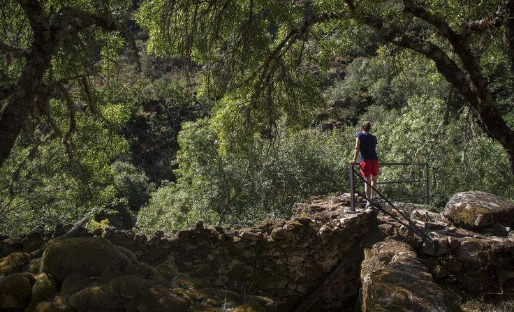 Ruta de los Molinos. San Martín del Castañar. Foto: Manuel Ruíz Toribio
