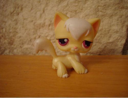 LITTLEST-PETSHOP-PET-SHOP-LPS-chat-cat-angora-rare-364-364
