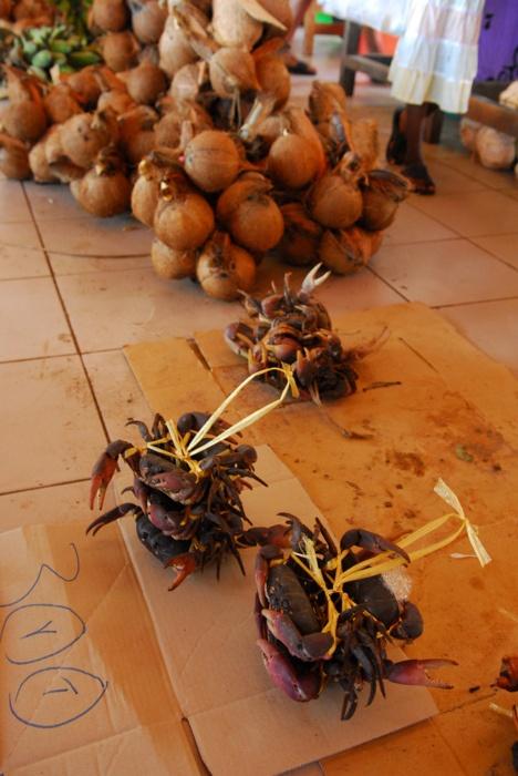 Crabs & Coconuts Vanuatu