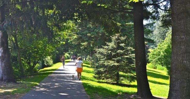 Hope Slough Trail - Image Copyright Ken Bramble