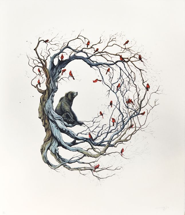 Candice Tripp. bear. birds. nest. tree. animals. art. illustration.