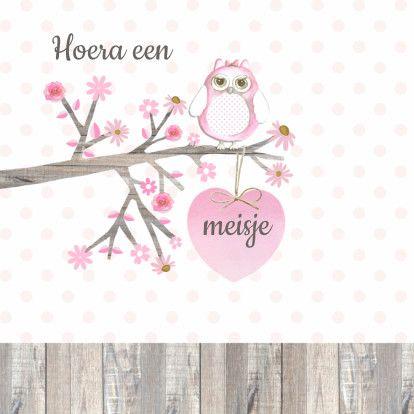 Felicitatie voor de geboorte van een meisje met lief roze uiltje op een houten tak met roze hart en stippen op de achtergrond. Design: Geertje Burgers. Te vinden op: www.kaartje2go.nl