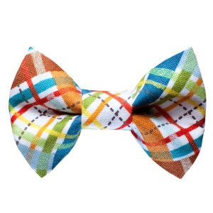 Sweet Pickles Designs 'The Correspondent' Cat Bow Tie - PetSmart   Shiro would look adorable in this =D