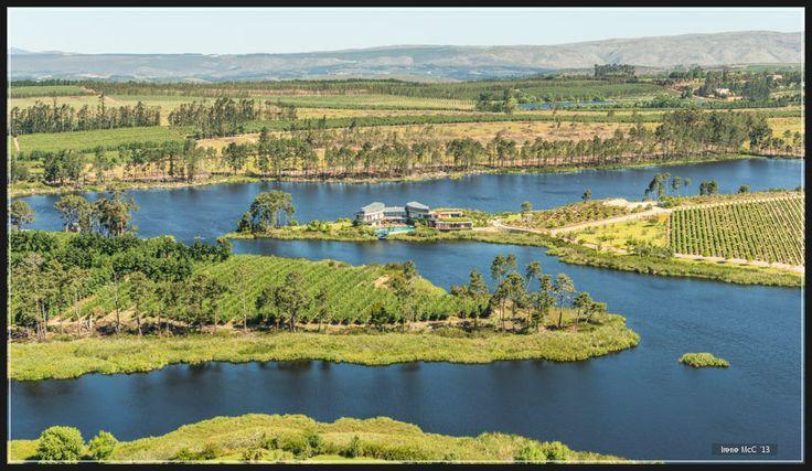 http://www.go2global.co.za/listing.php?id=2232&name=Lothian+Vineyards+