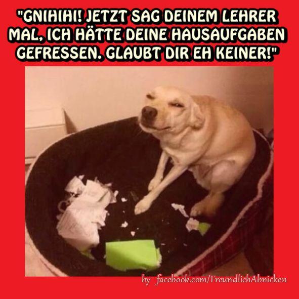 have high Seine gf und reife Paar Dreier not looking