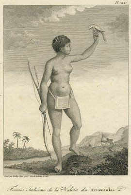pre columbian history of the caribbean indigenous people essay This thread is about the following:the pre-columbian era incorporates all perio   chapter two: the caribbean before and after columbus by karl watson (no  photo)  indigenous peoples of the americas continue to evolve after the  the  many essays in this volume explore the vast vista of the pre-columbian world,.