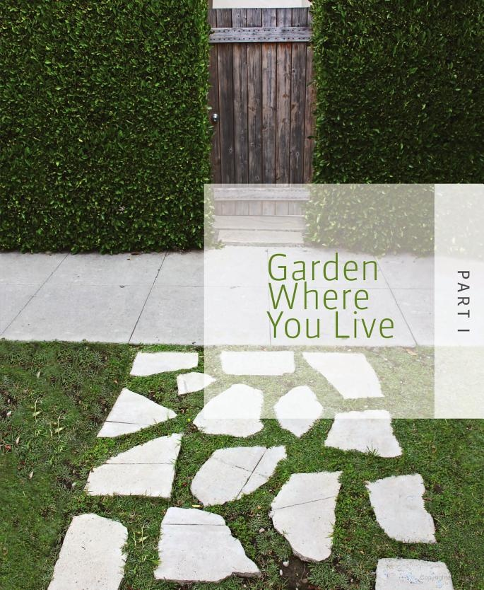 Tomorrow's Garden: Design and Inspiration for a New Age of Sustainable Gardening - Stephen Orr - Google Books