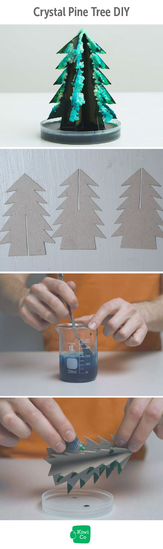 Crystal Pine Tree DIY. This cool crystal pine tree is a fun and easy way to experiment with crystal growth. The crystals are grown on a sturdy paper base, and appear overnight! christmas, science, easy, fun, for kids, activities, boredom busters, simple, science fair, science experiments, educational