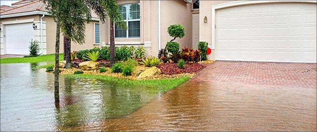 Professional companies have the knowledge to provide you with perfect water damage restoration. If your facing water damage trouble in your property then hire water damage Chandler for their effective help. Click the link for more details on their services.     #waterdamageChandler