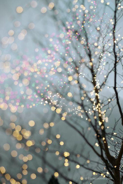 Sparkle' tree