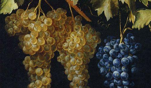 """""""La filosofía del vino"""" de Béla Hamvas"""