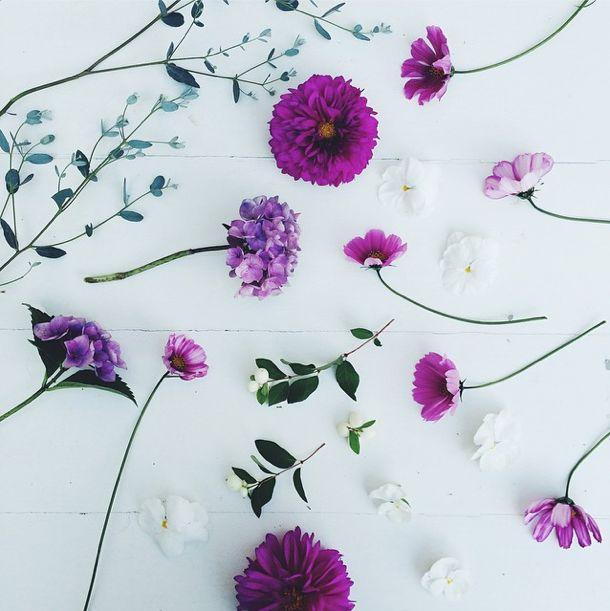 Nordiske Riger - Instagram moments - Moebe - Ramme - Hortensia - plante - blomst - inspiration - designblog - kusntblog - dekoration - Nyborg - fyn - still life - indretning - webshop billeder - lilla blomster