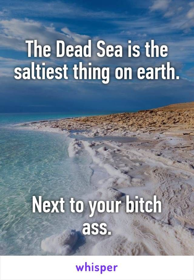 The Dead Sea is the saltiest thing on earth.      Next to your bitch ass.