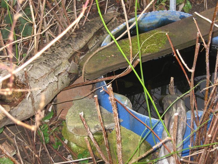 Wasserstellen - Wassertonne
