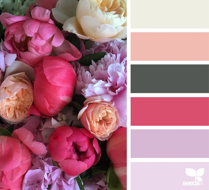 Flora palette -www.homeology.co.za