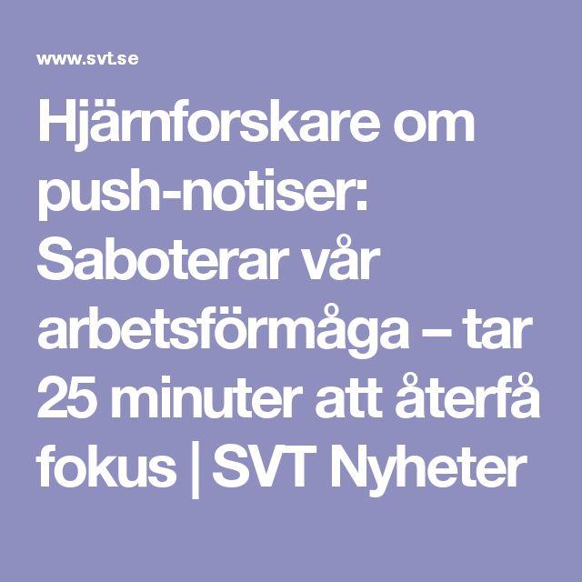 Hjärnforskare om push-notiser: Saboterar vår arbetsförmåga – tar 25 minuter att återfå fokus | SVT Nyheter