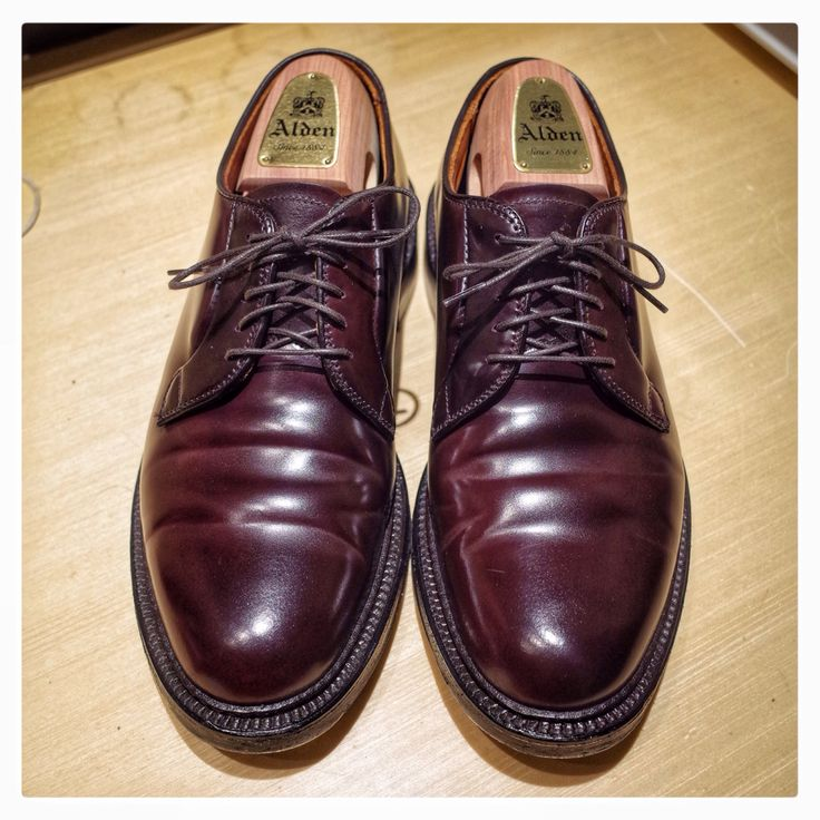 Alden color 8 shell cordovan plain toe blucher #alden #shellcordovan #alden990