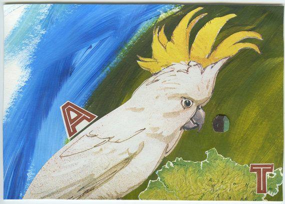 Handmade ArtCards set of 4 Australia Animal by NatureNellsSister