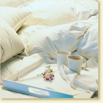 Pacific Coast Down Comforters & Feather BedsCoast Beds, 2 Pack Pillows, Pacific Coast, Bedrooms Makeovers, Bedrooms Comforters, Feathers Pillows, Beds Runners, Feathers Beds, Pacificcoast Com