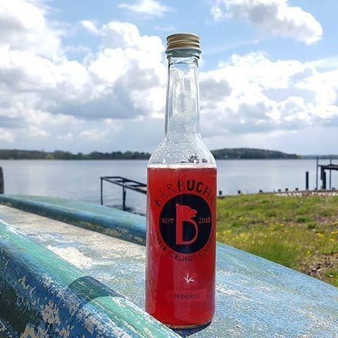 Great looking picture from the great folks all the way over @baerbucha.kombucha! What a great shot of a beautiful lake in Werder, Germany!
