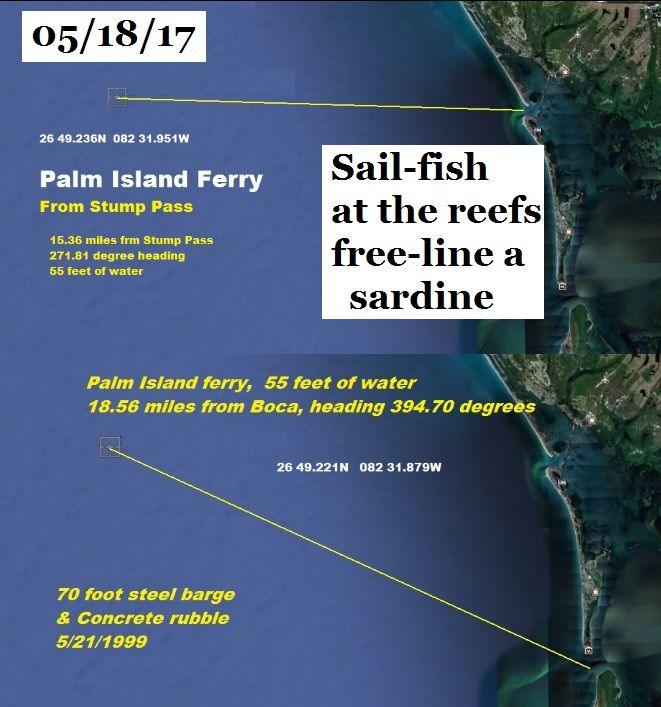 Sail fish have been caught, several in fact. while people are fishin the reefs.  Put out a free line bait, and hope for it. Sardines or pin fish.  not enough to target them, but a very good chance at a by catch. This is one of the reefs where a Sail fish had been hooked Fishin Frank #fishinfranksupdates