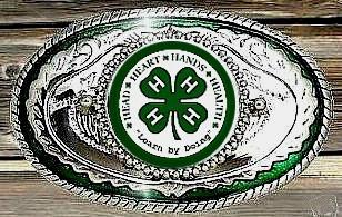 4H FFA Fair Western Country Clover 4 H Belt Buckle USA | eBay