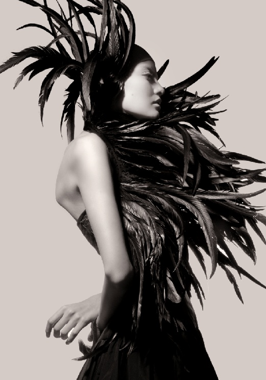 'Conspiracy Theory' | Elsa Castellon By Ivan Aguirre | May2012Inspiration, Black Swan, Feathers Fashion, Black White, Elsa Castellon, Conspiracy Theory, Ivan Aguirre, Birds, Black Feathers