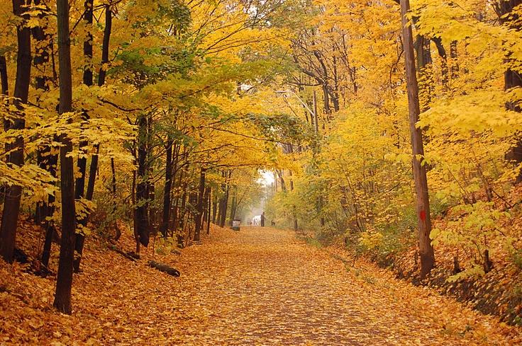 Chedoke Rail Trail. Hamilton, Ontario