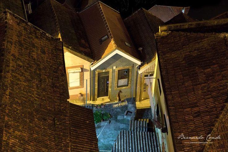 Barking at the ghosts, Vila Nova de Gaia, Portugal
