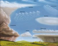 Cloud Classification Quick Reference (C1, W23): Types Of, Sky, School, Nature, Cloud Chart, Cloud Types, Weather, Types Clouds, Earth Science