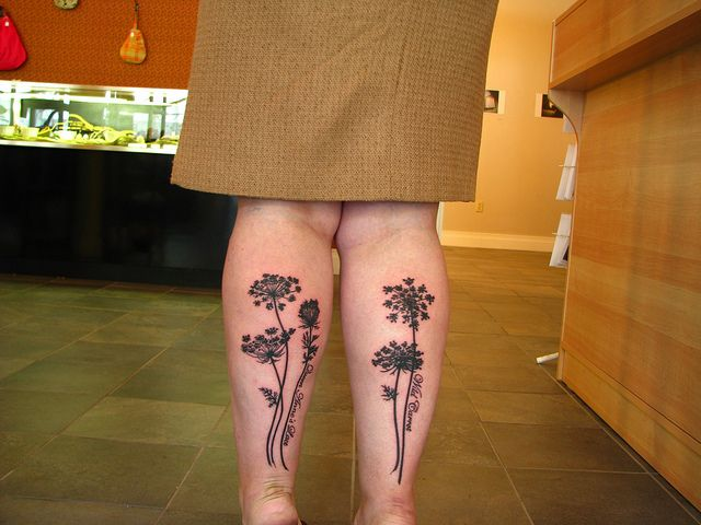 Queen Anne's lace by slipperykate, via Flickr