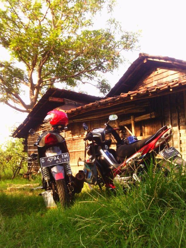 Java indonesia.pemalang pantai Blendung