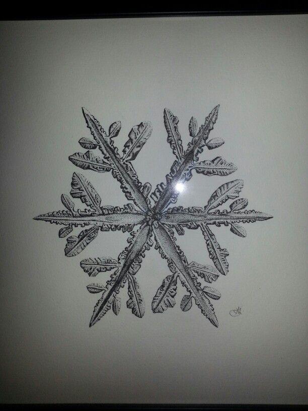 Snowflake stippling . 12 hours.