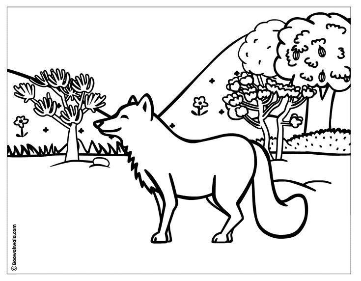 forest scene coloring page
