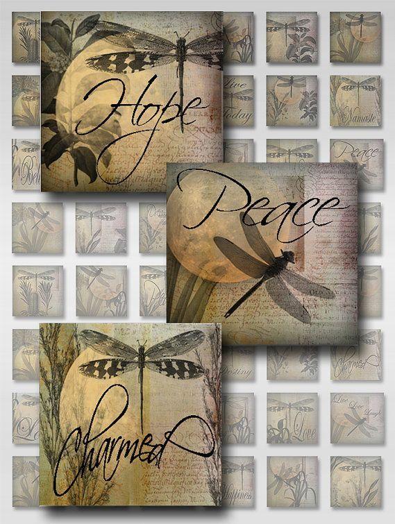 26ff4e1f5fe8f891a5bcb00e1e716b53--dragonfly-quotes-dragonfly-crafts.jpg
