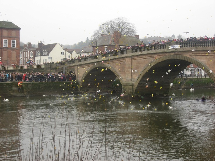 Bewdley: My heart will always belong in the beautiful Georgian town where I grew up. Every year, on New Year's Day, they have a duck race - weird and wonderful! I miss it so much