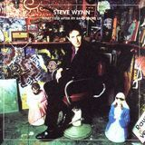 What I Did After My Band Broke Up: The Best of Steve Wynn/Visitation Rights [CD]