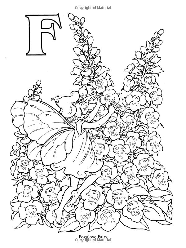 Garden Fairy Alphabet Coloring Book: Darcy May ...