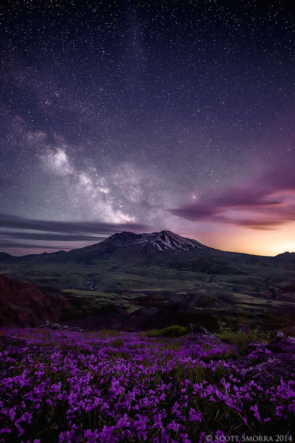 """♥♥ Flowers, stars and mountains for MY Beautiful Bride! ♥♥ """"Limitless"""" The"""