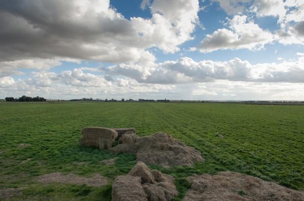 Great Fen, Cambridgeshire