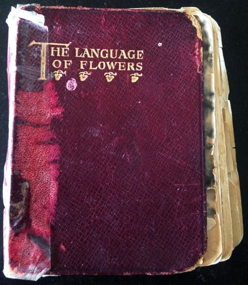 Floriography : http://www.proflowers.com/blog/floriography-language-flowers-victorian-era