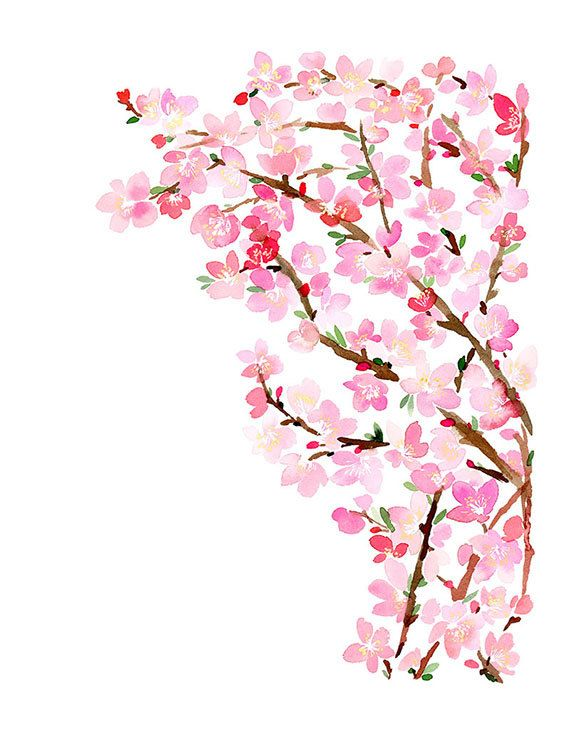 Handmade Watercolor Flower Cherry Blossom Painting- 8x10 Wall Art Watercolor Print on Etsy, $20.00