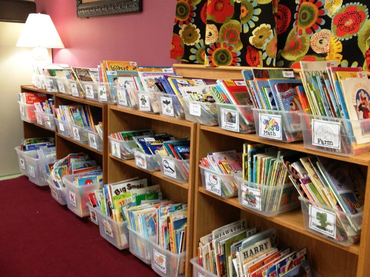 Ready to ditch the old way of organizing books!? This ROCKS! matching label for bin and book. Tons of categories plus you can edit and make your own!